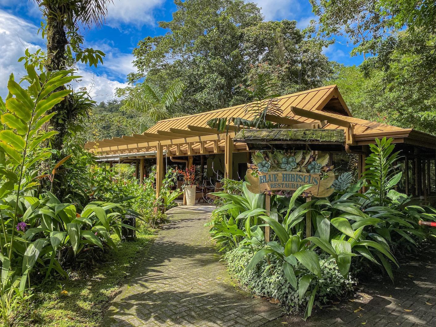 Lost Iguana Resort